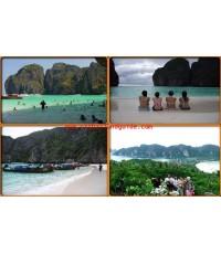 เกาะพีพี (เต็มวัน)