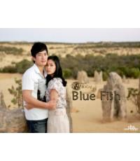 ซีรี่ย์Blue Fish ทางรักสองเรา /พากษ์ไทย/V2D 4แผ่นจบ/ละครเกาหลี/20 ตอนจบ