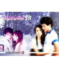 เสี่ยงลวงเสี่ยงรัก(สเตฟาน+ขวัญ อุษามณี) /ละครไทย TV2D  4แผ่นจบ