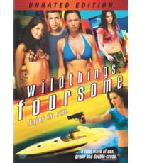 หนังฝรั่งWild Things: Foursome เกมซ่อนกล 4 /พากษ์ไทย+.ซับไทย DVD 1แผ่น