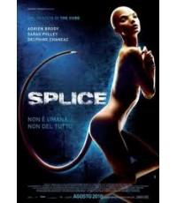 หนังฝรั่งSplice  สัตว์สาวกลายพันธุ์ล่าสยองโลก /พากษ์ไทย,อังกฤษ+ซับไทย DVD 1แผ่น