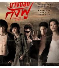 บางกอกกังฟู(โทโมะ,แก้ว,แบงค์,มาริโอ้,เป้) /หนังไทย