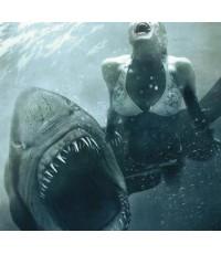 หนังฝรั่งShark Night ฉลามดุ /พากษ์ไทย,อังกฤษ ซับไทย,อังกฤษ
