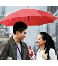 โปรดรัก...ยังไม่สาย A Beautiful Life/หนังจีน /พากษ์ไทย,จี่น ซับไทย