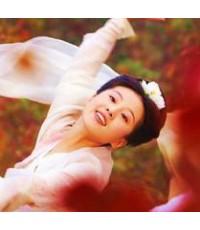 นางพญาโปเยโปโลเย ตอน อิทธิฤทธิ์จิ้งจอกสวรรค์ /พากษ์ไทย,จีน ซับไทย DVD 2แผ่นจบ