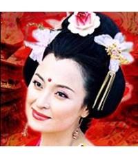 ยอดหญิงในวังหลวง /หนังจีนโบราณ /พากษ์ไทย 4แผ่นจบ(อัดทีวี)