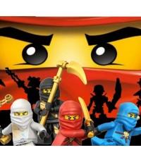 LEGO Ninjago : Masters of Spinjitzu Season 1 / เลโก้ นินจาโก ปี1/การ์ตูนชุด /พากษ์ไทย V2D 1แผ่นจบ