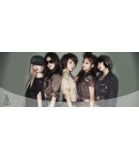 4Minutes All in DVD : 1 แผ่น ซับไทย