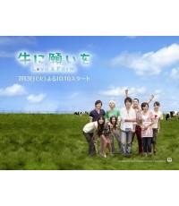 Love and Farm : DVD 6 แผ่นจบ ซับไทย