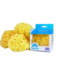 BOLINA โบลิน่า ฟองน้ำธรรมชาติสำหรับดูแลผิวลูกน้อย