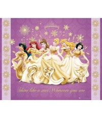 DVD Princesses Collection  40 Disc.