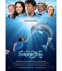 Dolphin Tale 2 มหัศจรรย์โลมาหัวใจนักสู้