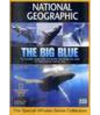 The Big Blue The Special Whales Series สารคดีวาฬสีน้ำเงิน