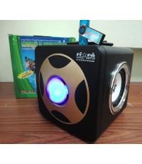 วิทยุกระเป๋าหิ้ว เล่น Mp3 รองรับ USB /Mem card
