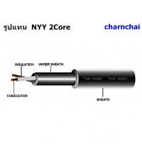 สายไฟฟ้า ไทยยาซากิ NYY 2 แกนพื้นที่หน้าตัดขวาง 6 MM2 สายไฟเบอร์ 6