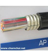 สายเคเบิ้ลโทรศัพท์ภายนอกอาคาร  20คู่สาย 0.65sqmm AP 20pair 22 AWG รหัส PHELPS DODGE รหัส AP020
