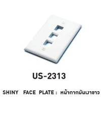 LINK US-2313CABLE – SHINY FACE PLATE 3 PORT