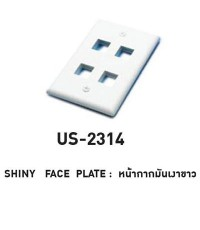 LINK US-2314 CABLE – SHINY FACE PLATE 4 PORT