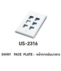 LINK US-2316 CABLE – SHINY FACE PLATE 6 PORT