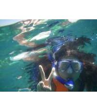 ดำน้ำดูประการัง 4 เกาะ
