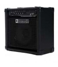 BASS AMPLIFIER B30