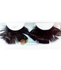 ขนตาแฟนซี ขนนก สีดำ (25)