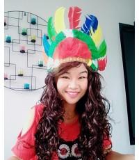 หมวกอินเดียแดง (สีรุ้ง)