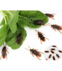 1 ถุง 8 ตัว แมลงสาบปลอม แมลงสาบพลาสติก ของเล่นตลก ของเล่นแกล้งคน อุปกรณ์ตกแต่ง ปาร์ตี้ ฮาโลวีน