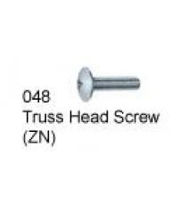 Truss Head Screw (ZN)