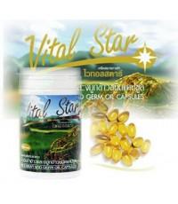 Vital Star น้ำมันรำข้าวและจมูกข้าว ไวทอลสตาร์ 1 ขวด บรรจุ 60 แคปซูล น้ำหนักสุทธิ 42 กรัม