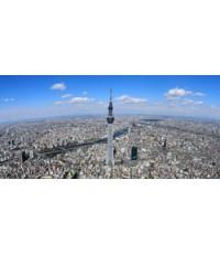 ทัวร์โตเกียว ภูเขาไฟฟูจิ 5วัน 3คืน TZ   // ราคา 24,900 บาท //