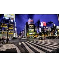 ทัวร์โตเกียว ฟูจิ SUKJAI  5วัน 3คืน TZ  //ราคา 19,900 บาท//
