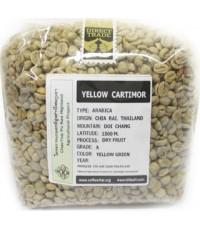 Green Bean Wet 18/19 : ARABICA Yellow Catimor เยลโลว์คาติมอร์