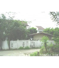 บ้านเดี่ยว 2 ชั้น  พร้อมที่ดิน ซ.เสมอดามาพงษ์(ซอยโยธิน) ลาดพร้าว71 บ้านตกแต่งสวยมาก