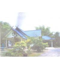 บ้านเดี่ยว 1 ชั้น พร้อมที่ดิน ต.บ้านมะเกลือ อ.เมือง จ.นครสวรรค์ เนื้อที่ 476 ตร.วา