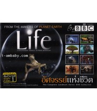 BBC: Life อัศจรรย์แห่งชีวิต ชุด 4 แผ่น DVD master 2 ภาษา