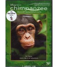 Disneynature : Chimpanzee (2012) ชิมแปนซี ผจญภัยในป่ากว้าง 1 DVD Master (Soundtrack-ซับไทย)