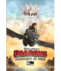 Dragons Defenders of Berk Complete Season 2 [Sound-English /Sub-English] 2 Discs