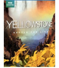 Yellowstone-Battle for life [พากย์ไทย-อังกฤษ/ บรรยายไทย-อังกฤษ] 1 Disc