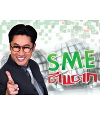 SME ตีแตก ชุด 8 : 1 DVD Master