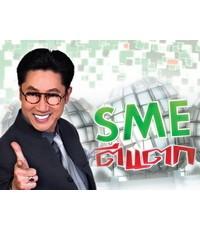 SME ตีแตก ชุด 12 : 1 DVD Master