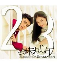 Suddenly Seventeen (2016) 1 DVD ซับไทย (หนังจีน)
