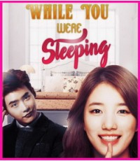 While You Were Sleeping 4 DVD (16ตอนจบ) ซับไทย (จบ)