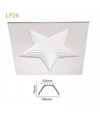 LP 24