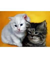 ขายภาพวาดสีน้ำมัน ภาพวาดตกแต่งห้อง ภาพวาดแมว02