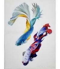 ขายภาพวาดสีน้ำมัน ภาพวาดตกแต่งห้อง ภาพวาดสีน้ำมันปลากัด06