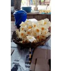 ดอกไม้จันทน์ ดารารัตน์ DIY (ชุด 100 ดอก) สำหรับไหว้งานพิธี