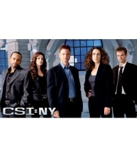 CSI:NY Season 3 ไขคดีปริศนานิวยอร์ค ปี 3 ดีวีดีพากษ์ไทย-บรรยายไทย 6 แผ่น*โคลนจากนมาสเตอร์สกรีนทุกแผ่