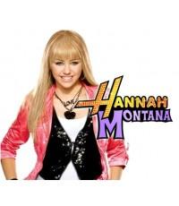 Hannah Montana:Complete 1st Season/ แฮนนาห์ มอนทานา...สาวเด่น เต้น ร้อง ปี 1 ซับไทย 4 แผ่น