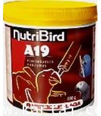 Nutribird A19 อาหารลูกป้อน สูตรสำหรับลูกนก ที่ต้องการไขมัน และพลังงานสูง บรรจุ 800 กรัม